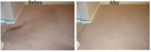 professional carpet cleaning in san jose california