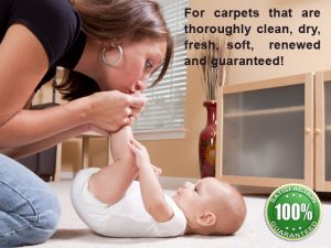 Dry Organic Carpet Cleaning Services in San Jose CA